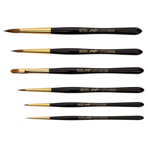 PROFI brushes set (6 pcs)